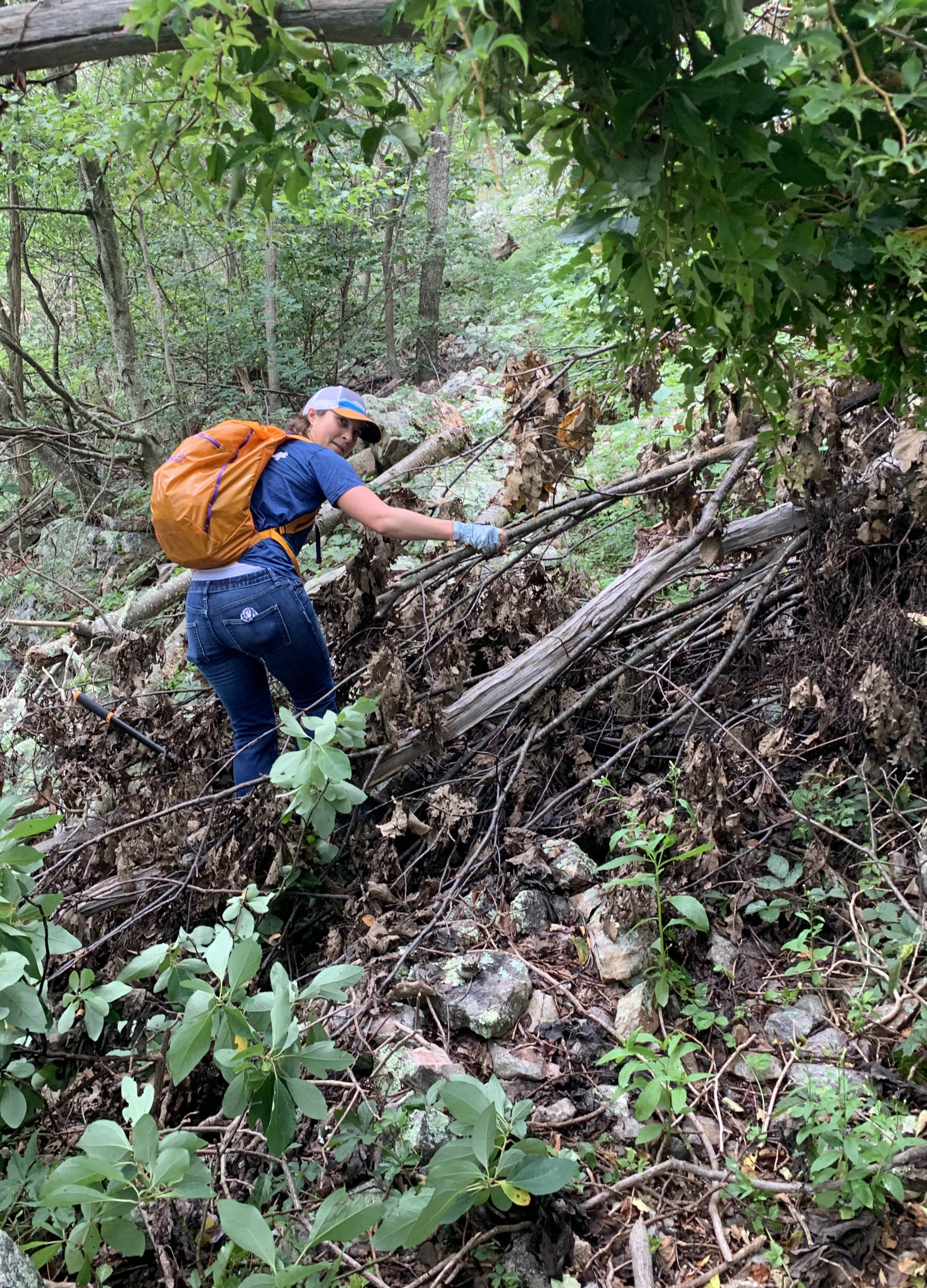 Sheila Vibert cleans up a downed tree on Short Mountain